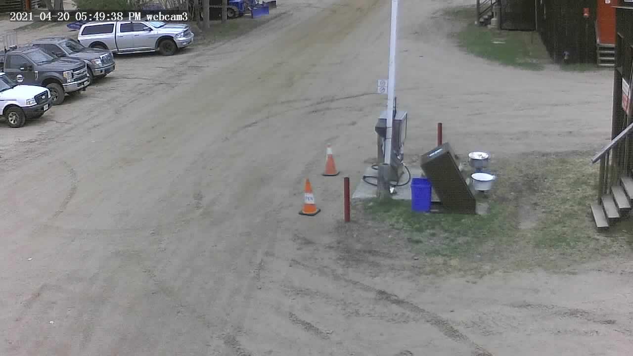 Haliburton Forest and Wildlife Reserve - webcam 3