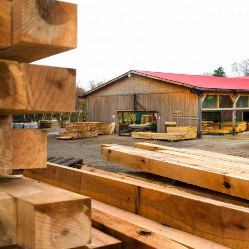 Haliburton Forest Logging