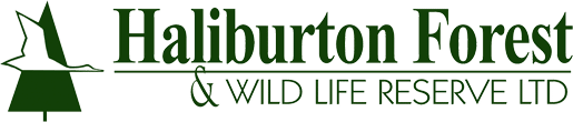 Haliburton Forest & Wild Life Reserve Ltd
