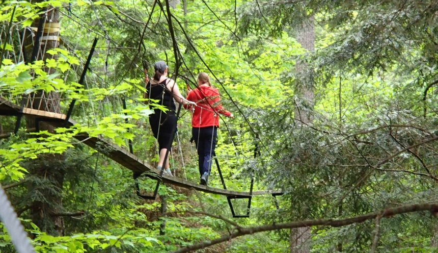 Haliburton Forest Canopy Tour hike
