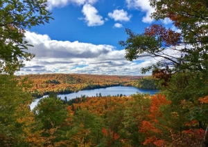 1 - Thanksgiving View - by Cathy Brown