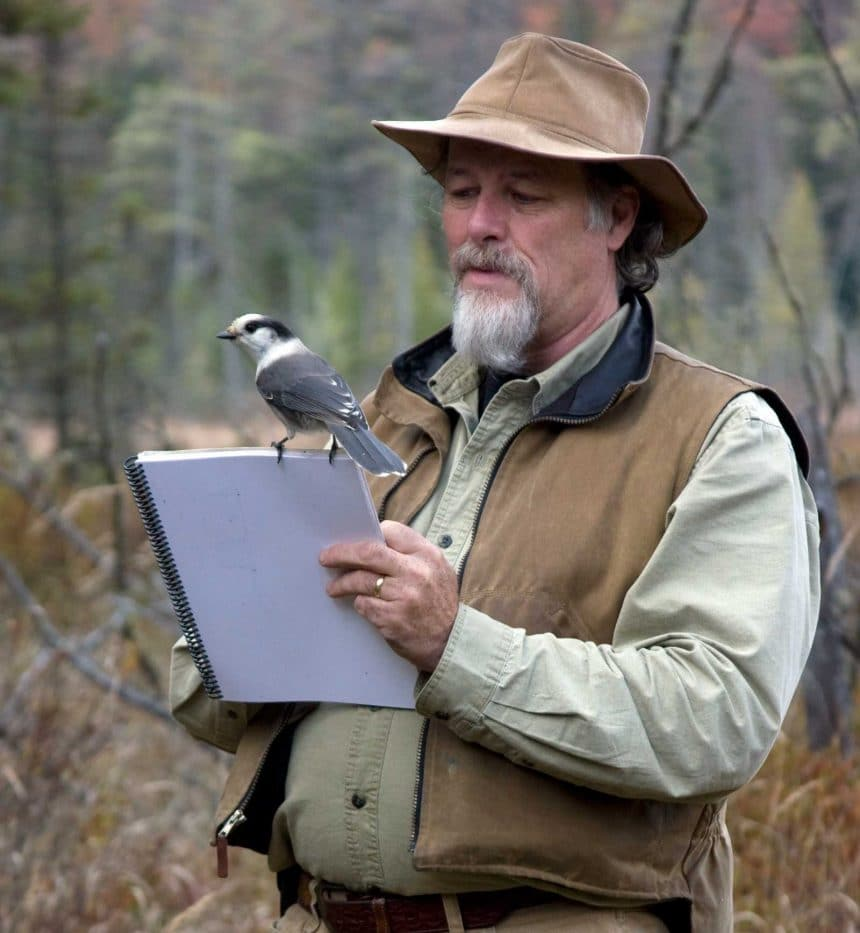 Birds of the Season at the Forest