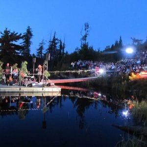 Forest Festival 2013