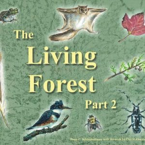 The Living Forest, Part Two
