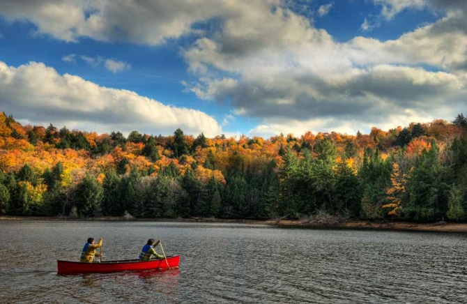 canoe and coloured fall forest