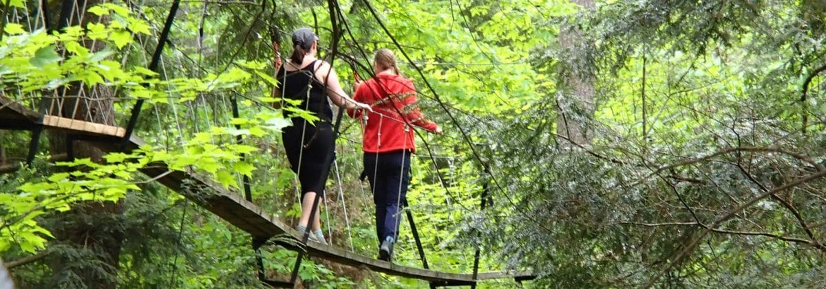Canopy Tour at Haliburton Forest