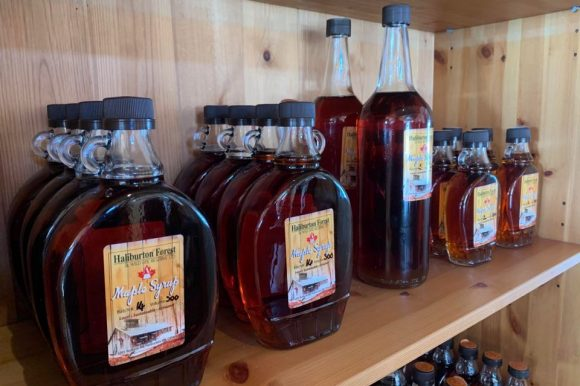 Make Your Own Maple Syrup This Year – Part 1