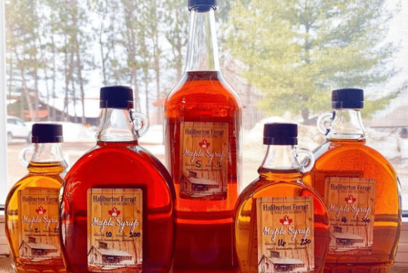 Make Your Own Maple Syrup This Year – Part 3